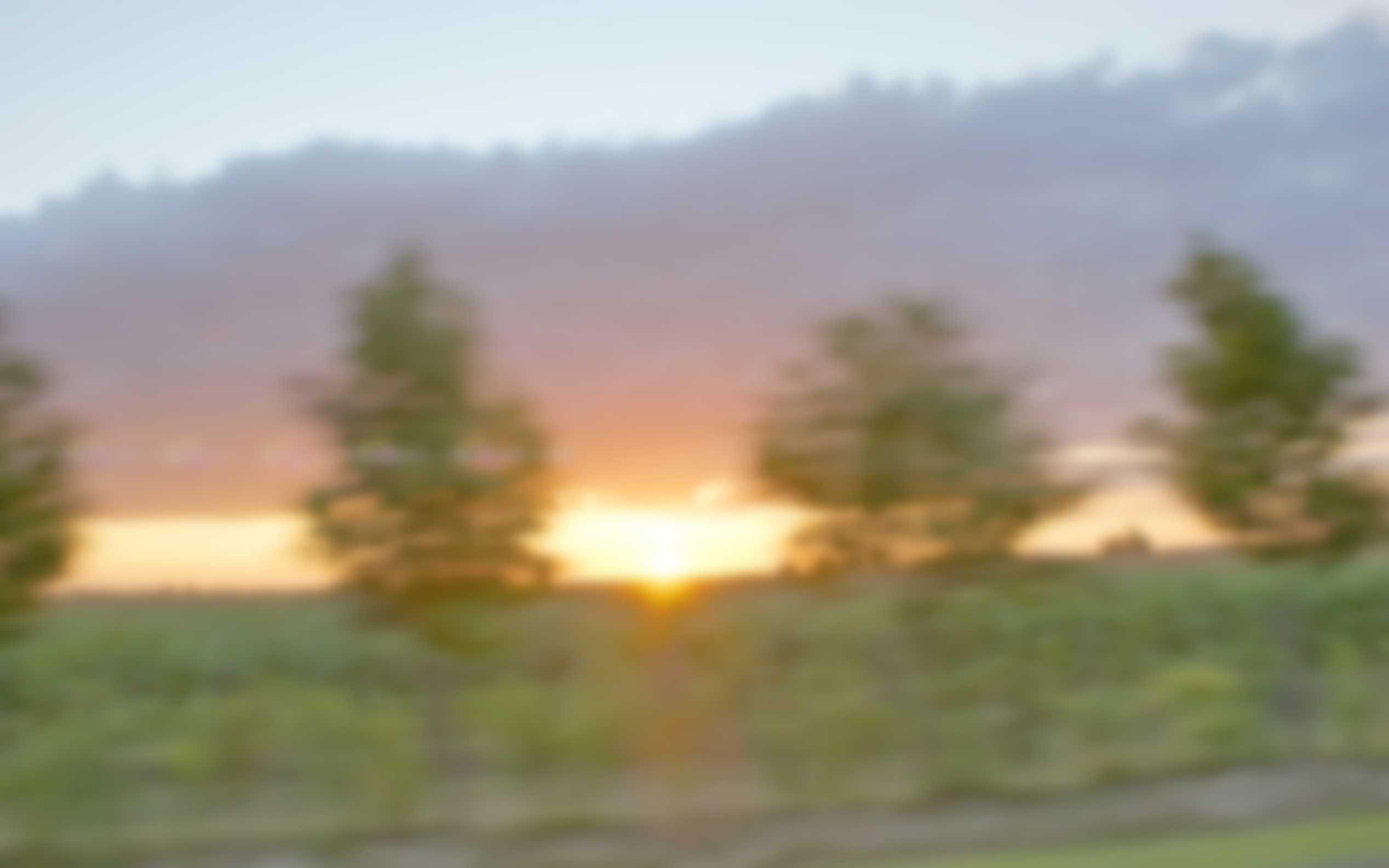 Sunrise in Movement