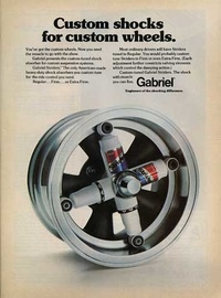 1974-Gabriel-Striders-Shock