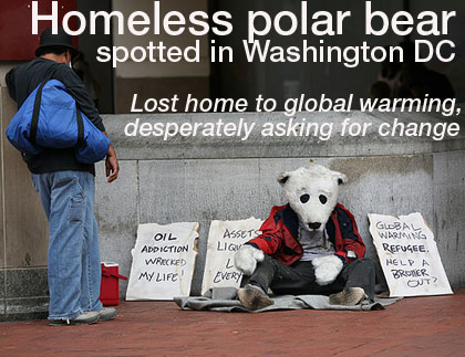 Homeless Polar Bear Spotted In Washington DC
