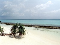 maldive beach 01