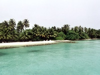 maldive beach 03