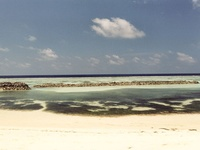 maldive beach 06