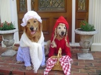 Red Riding Hood and Granny - Dogs version