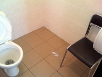 Toilet is occupied? No problem... just sit quietly and wait for your turn =))