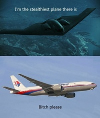 Malaysia Boeing 777 is the stealthiest plane there is