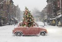 Small Christmas Tree Car in Winter
