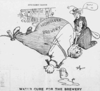 1902 -  Woman's Christian Temperance Union Cartoon - The Hawaiian Gazette, May 23