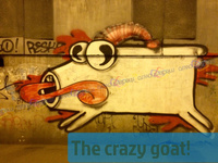 The crazy goat!